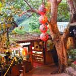 豊かな自然と茶畑の中で台湾茶を楽しむ猫空|台北