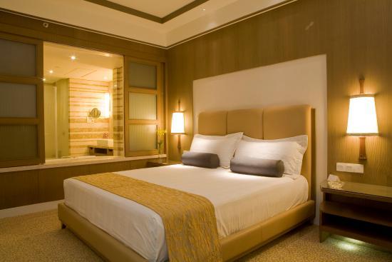 クラウン プラザ ホテル ニュー デリー オクラ