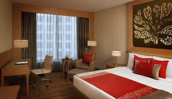 ラディソン ブル ホテル ニュー デリー ドワルカ