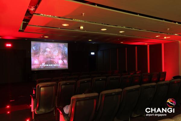 参照:http://www.changiairportgroup.com/cag/html/media-centre/media-gallery/family-entertainment-and-lifestyle.html